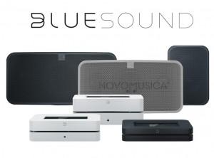comprar_bluesound_node2i_powernode2i